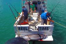 Rarotonga's best equipped fishing operation uses Penn International reels, Pacific Marine Charters have been fishing Rarotonga's open waters for many years. Their boats are equipped for the big catch!